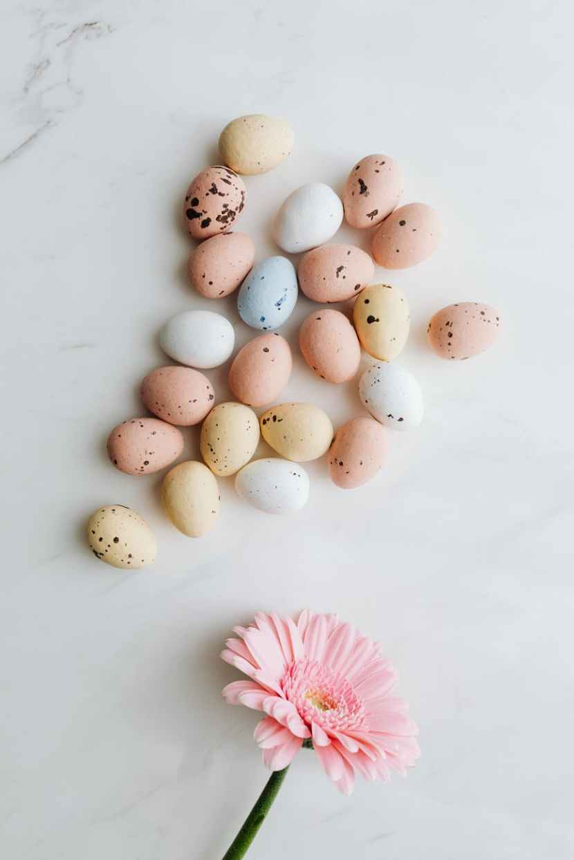 easter eggs and pink flower